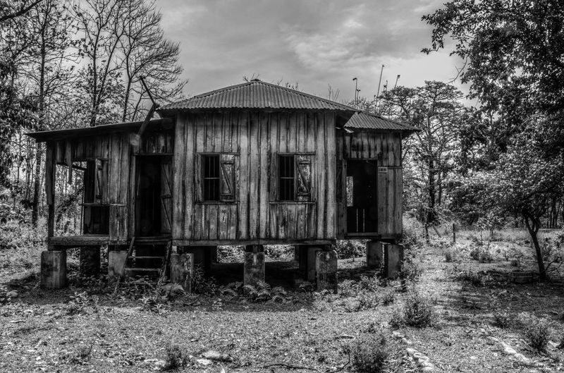 The last house on the left! Old House Ruins HDR Blackandwhite WestBengal Forest Nofilter Nikon D7000