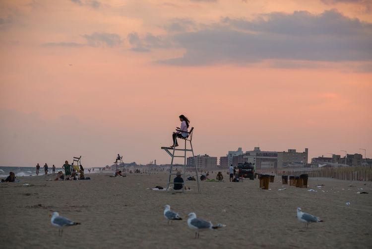 Seagulls people on beach against orange sky