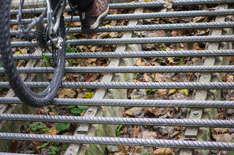 Animal Themes Bars Bicycle Cattle Grid Cattle Guard Close-up Day Human Body Part Low Section Metal One Person Outdoors People Stock Grid Wild Animals