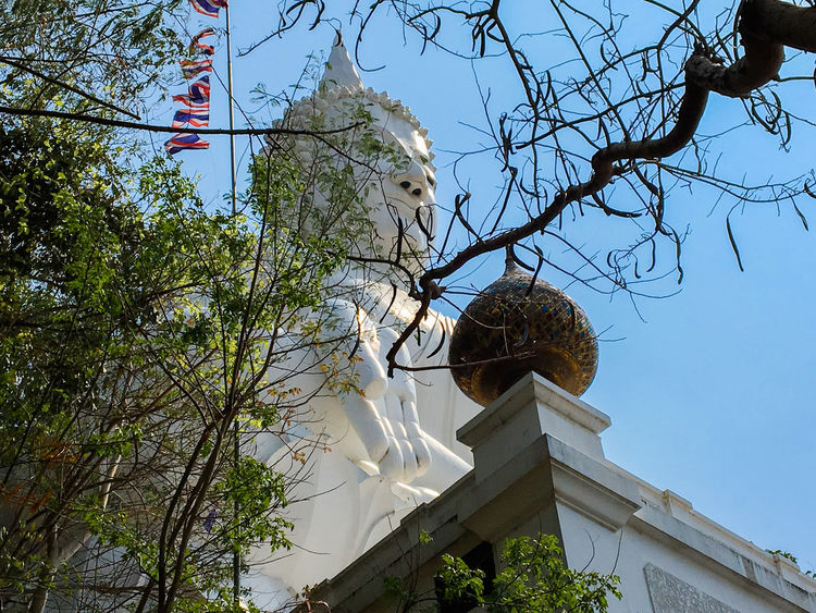 Architecture Bare Tree Blue Buddha Buddhism Buddhist Day Low Angle View Nature No People Outdoors Sky Travel Destinations Tree