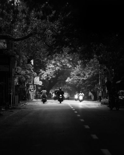 Street amidst trees and buildings in city at night