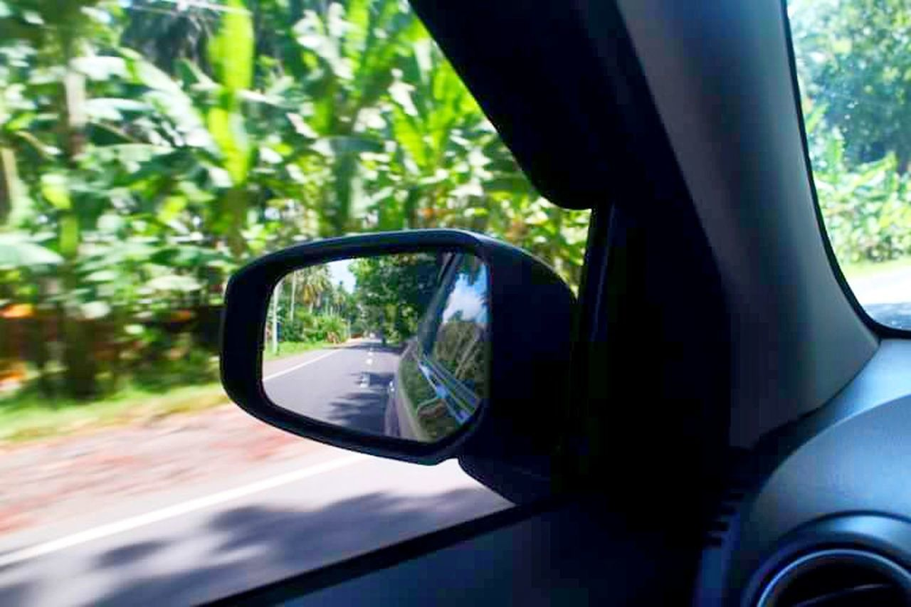 reflection, side-view mirror, window, car, tree, transportation, vehicle mirror, green color, nature, day, outdoors, no people, sky