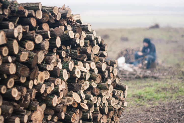 Stack of log on field