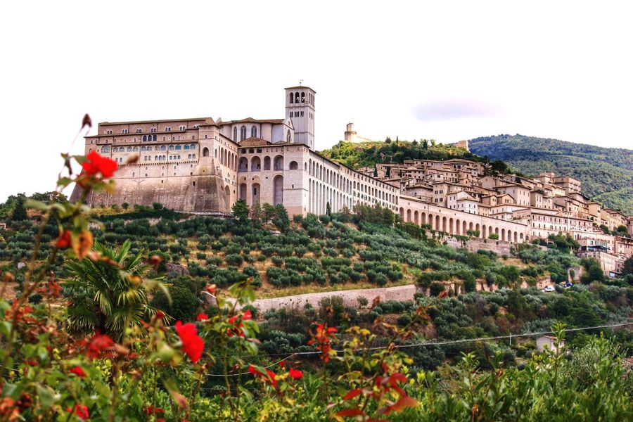 Assisi-St.Francis'Birthplace Building Exterior Flower Architecture Plant Built Structure Tree Travel Destinations Outdoors Growth History Flowerbed No People Sky City Nature Day Assisi, Italy Saint Francis Of Assisi Italy