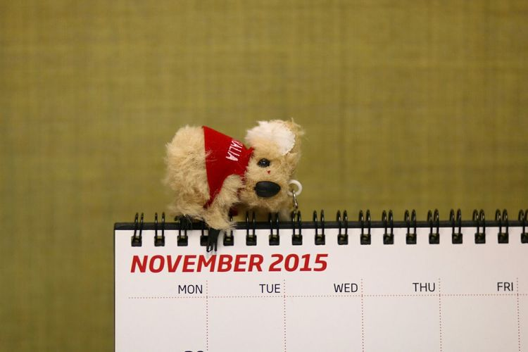 Close-up of teddy bear on calendar