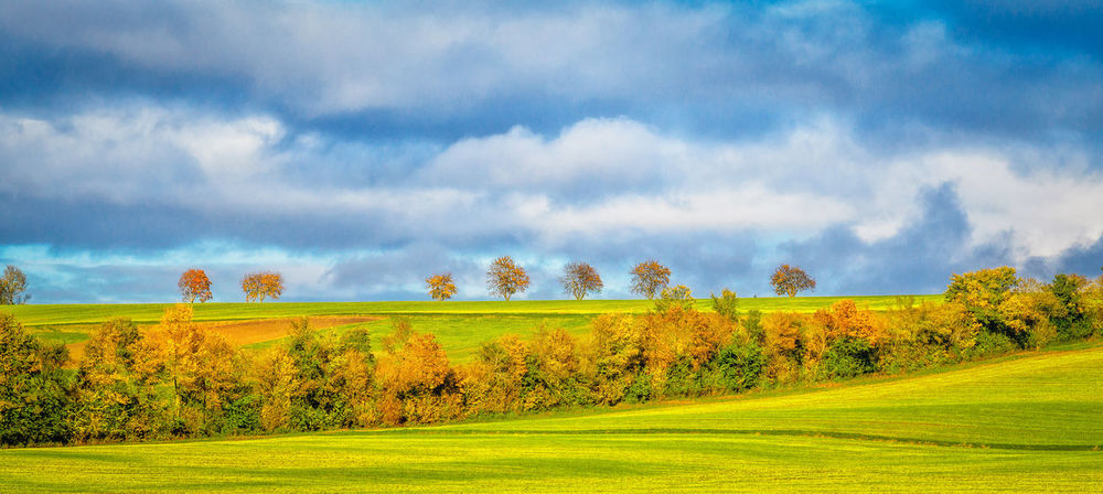 Autumn Beauty In Nature Cloud - Sky Colerfull Day Field Grass Landscape Nature No People Outdoors Scenics Sky Tree