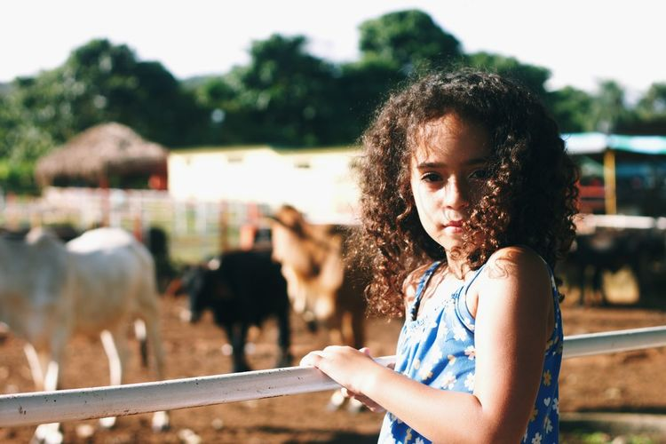 Portrait of girl standing by railing at barn