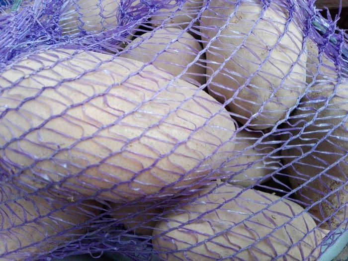 Patatoes Patatoes Sack Of Potatoes Pattern No People Full Frame Backgrounds Close-up No Person Huaweiphotography Eyeem Market Ionita Veronica Veronica Ionita Wolfzuachiv WOLFZUACHiV Photos On Market Huawei Photography WOLFZUACHiV Photography Veronica IONITA Photography Vegetables Cartofi Barabule Murphy Nightshade Nightshade Family