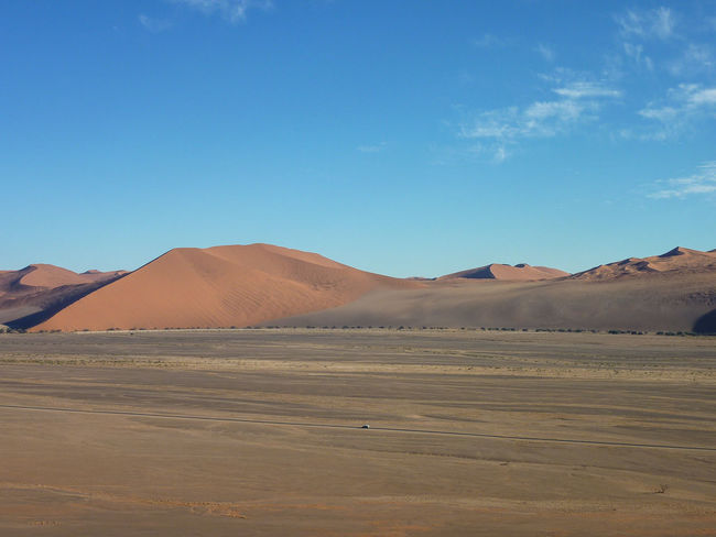 Arid Climate Beauty In Nature Blue Day Desert Extreme Terrain Geology Landscape Mammal Namib Desert Namib Dunes Namibia Nature No People Outdoors Physical Geography Remote Sand Sand Dune Scenics Sky Sunlight Tranquil Scene Tranquility Travel Destinations