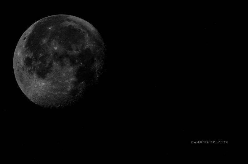 Streamzoofamily TheVille Goodnight Moon Moon