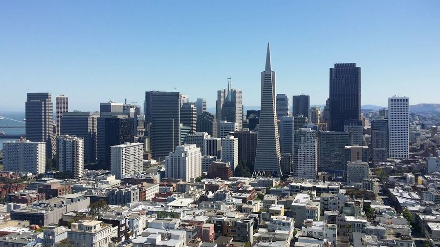Transamerica pyramid and buildings against clear sky