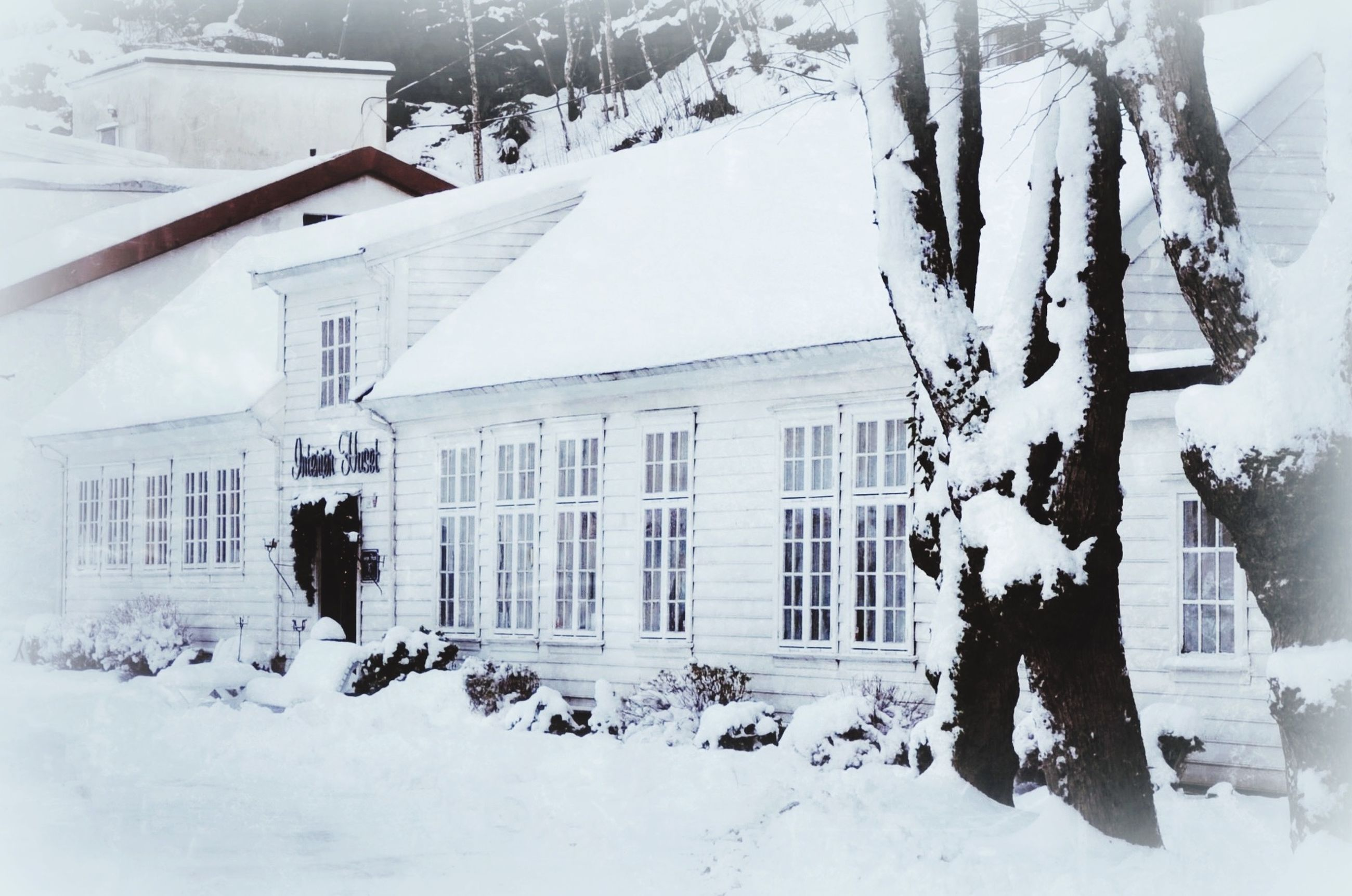 snow, winter, cold temperature, season, building exterior, architecture, weather, built structure, covering, white color, walking, rear view, full length, window, house, day, lifestyles, men