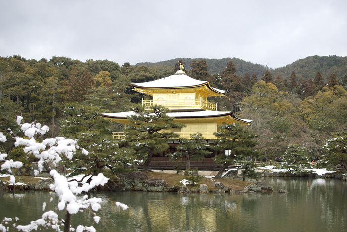 World Heritage Site Kinkakuji Temple. Architecture Building Gold Golden Pavilion  Historic Site Japan Japanese  Japanese Culture Kinkaku-ji Kinkaku-ji Golden Pavilion Kinkaku-ji Temple Kinkakuji Kinkakuji Temple Kyoto Kyoto,japan Landscape Popular Snow Temple Traditional Winter World Heritage Site
