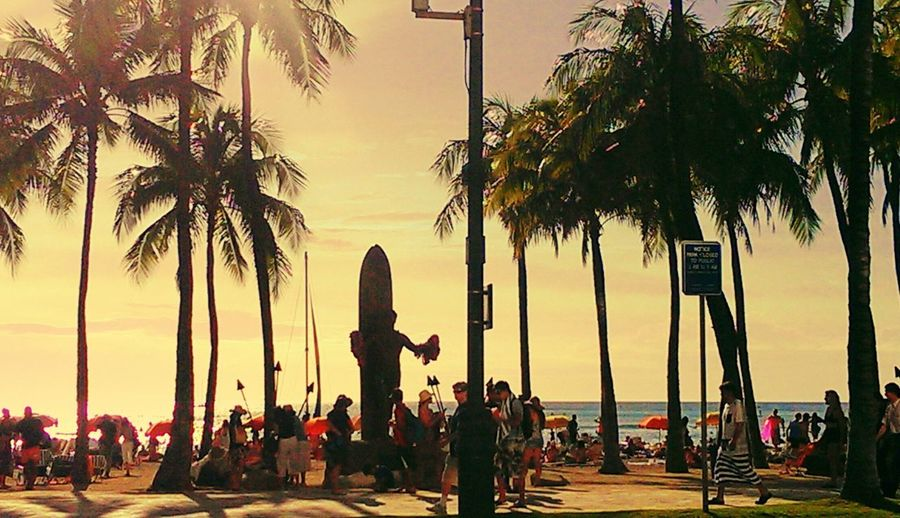 People on palm trees at sunset