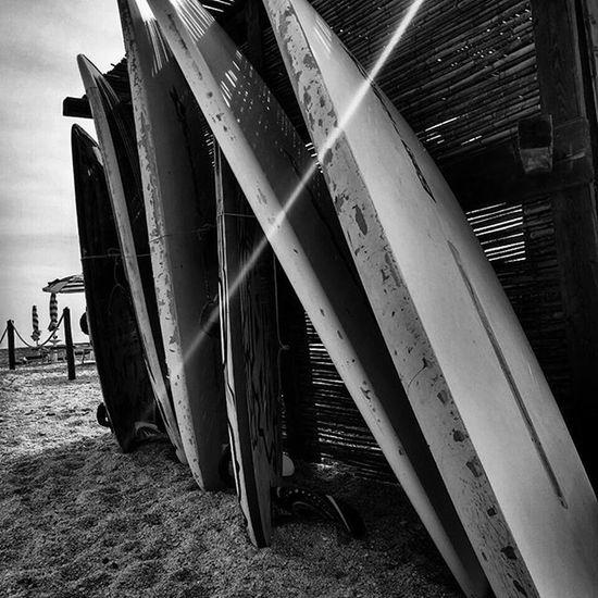 Surf Lesaline Stintino Summer Sardegna Instasardegna Vento Vacanze Beach Igaddict Igersoftheday