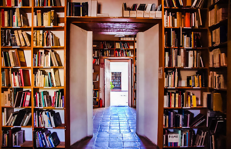 libros para todos Hersaphotography Abundance Arrangement Book Bookshelf Bookstore Choice Collection Education Flooring Home Interior Indoors  Ladder Large Group Of Objects Learning Library Literature No People Order Pedrohersa Publication Shelf Variation Wisdom