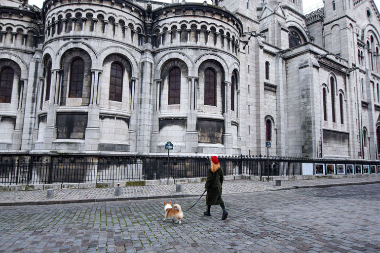 A blonde parisian girl in a red beret walking her pet corgi dog in montmartre on a winter afternoon.