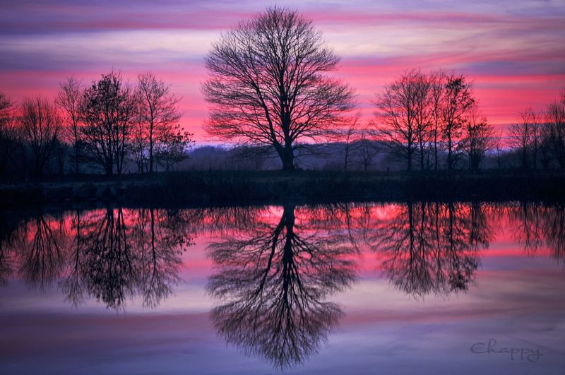 Perfect Sunday in North Germany 2 Tree Reflection Plant Sky Sunset Beauty In Nature Water Silhouette Pink Color No People Nature Lake Cloud - Sky Outdoors Idyllic