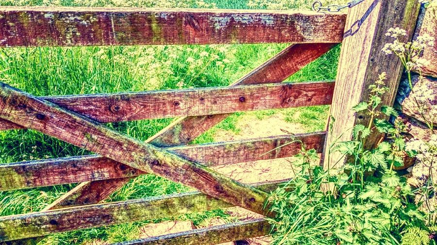 Five Bar Gate Old Wood Textures And Surfaces Countryside Country Life Beauty In Nature Nature Nature_collection Rural Scene Farmland Traditional Craft