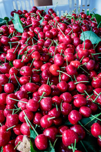 Henan Local Abundance China Close-up Day Food Food And Drink For Sale Freshness Fruit Healthy Eating Large Group Of Objects Market Nature No People Outdoors Puyang Red Taiqian