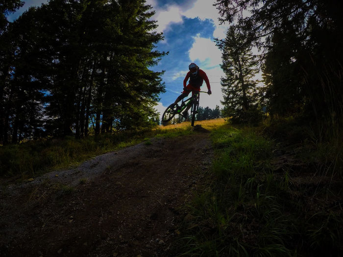 Whip it #Mtb #mood #world WhipIt Activity Bicycle Day Grass Land Leisure Activity Lifestyles Mountain Bike Nature One Person Outdoors Real People Sky Sport Tree