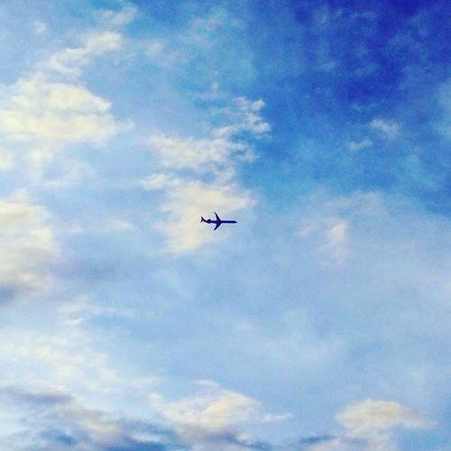 Flying Sky
