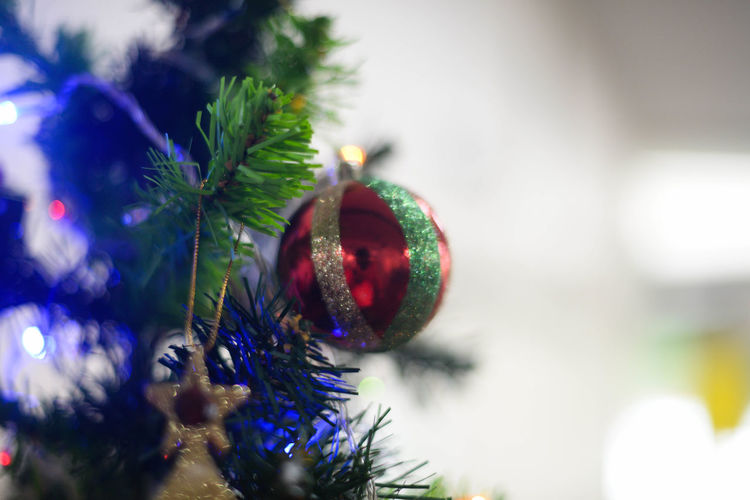 Bauble Celebration Christmas Christmas Decoration Christmas Lights Christmas Ornament Christmas Tree Close-up Day Focus On Foreground Green Color Holiday - Event Indoors  No People Tradition Tree