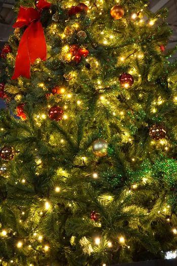 Christmas Holiday Celebration Decoration Illuminated Christmas Decoration Christmas Lights christmas tree Christmas Ornament Night Light