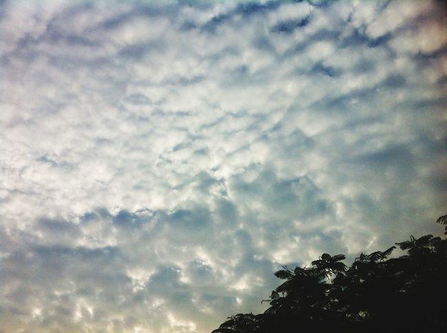 Taking Photos Enjoying Life Cloud And Sky