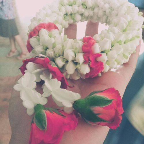 มาลัย Taking Photos Flowers พวงมาลัย Check This Out Red Rose White Flower ดอกรัก