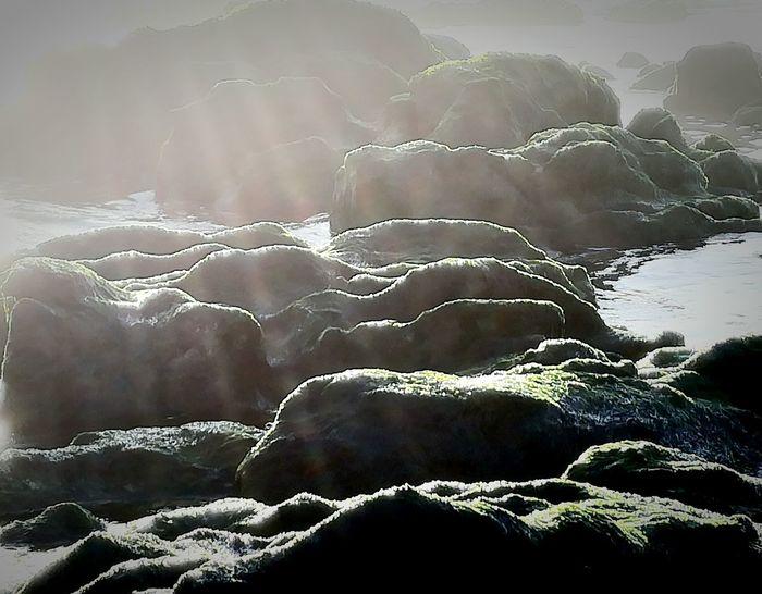 🌅 Beachphotography Beauty In Nature Nature Sunlight Outdoors 🌴😎beach,Sun&fun💛 Mypointofview Hello World Taking Photo Beauty In Nature 🌅 Enjoying Life 🌊 Naturephotography Relaxing ⚓