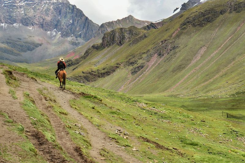 Rear View Of Man Riding Horse On Mountain