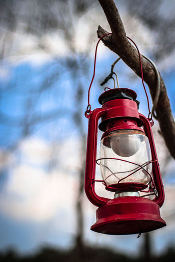 Low angle view of red lantern hanging on branch against sky