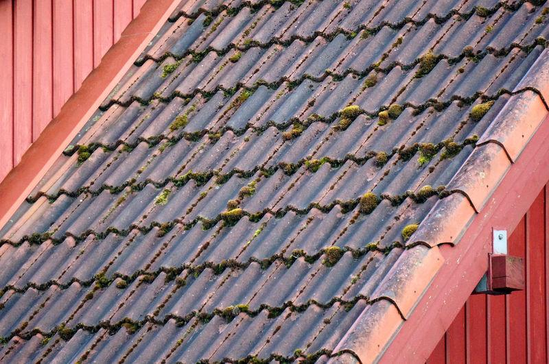 High angle view of roof tiles