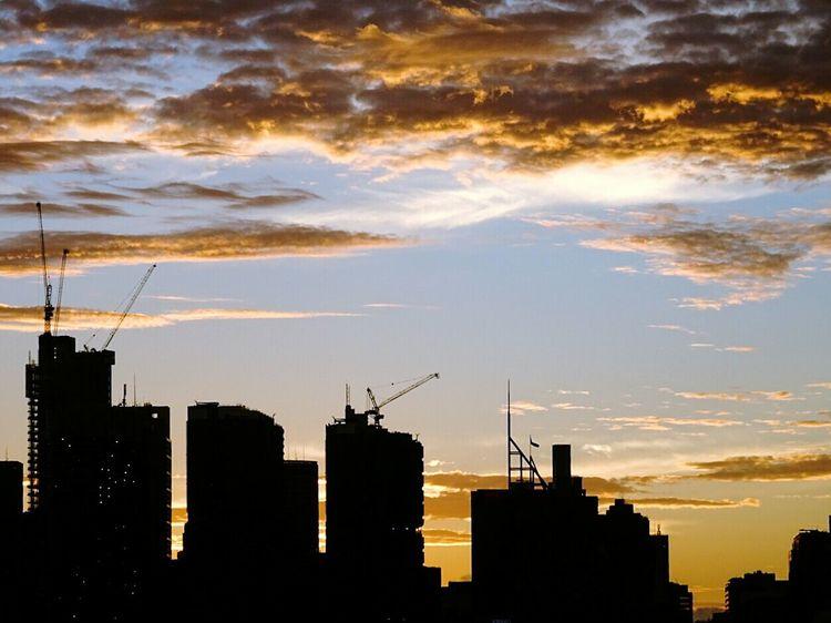 Sydney Cranes Cranes Of Sydney Cranes On Buildings Sydney City City Sunset Silhouette City Construction City Development
