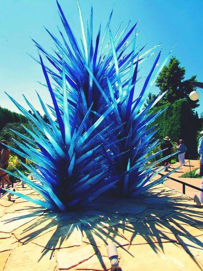 Colorado Botanical