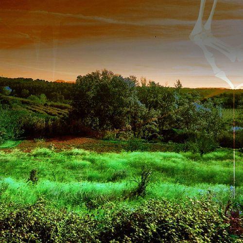 Gf_spain Landscape Landscapestyles_falsecolors_001 Landscapestylesgf lebanon_hdr sumaysiguenos gang_family gf_featured mente_libre