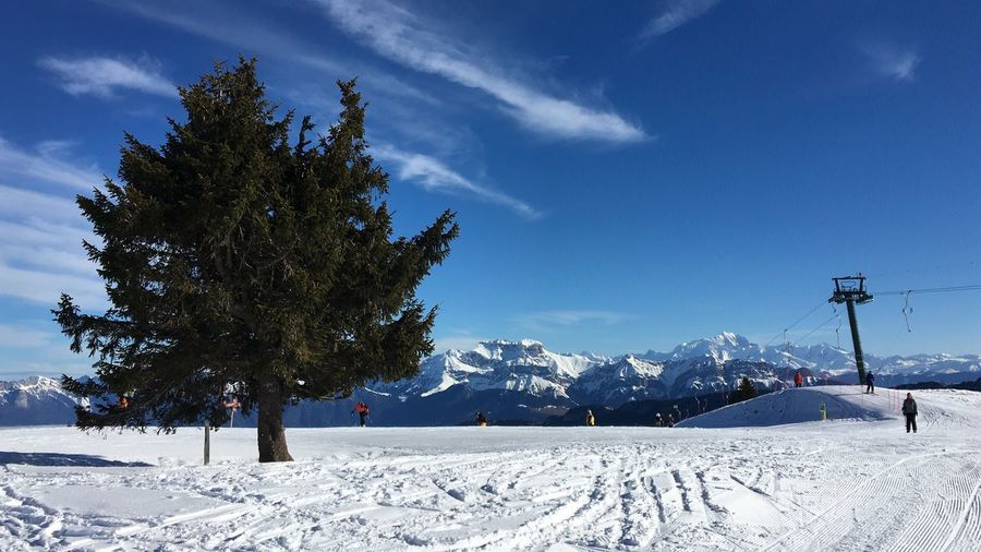 Semnoz station Station Station De Ski Semnoz Wintertime Winter Sport Skiing Ski Snow Tree Cold Temperature Winter Plant Sky Nature Covering Cloud - Sky Beauty In Nature Day Land Sunlight White Color Scenics - Nature Growth No People Tranquil Scene Field Outdoors