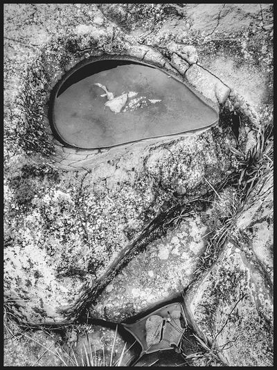 Reflection Outdoors Close-up Nature Perspective Shapes In Nature  Water Tranquil Scene Natural Condition Views Weathered Layers And Textures Textured  Backgrounds Scenics View Beauty In Nature Scenic Moss & Lichen Growth Abstractions In BlackandWhite Black And White Natural Architecture Rock Formation Abstract Nature