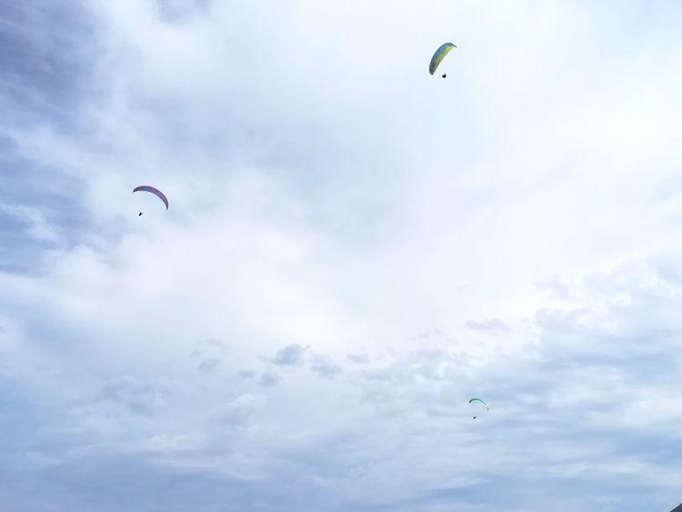 Attese. Flying Mid-air Bird One Animal Animal Themes Cloud - Sky Animal Wildlife Sky Outdoors Motion Parachute Paragliding