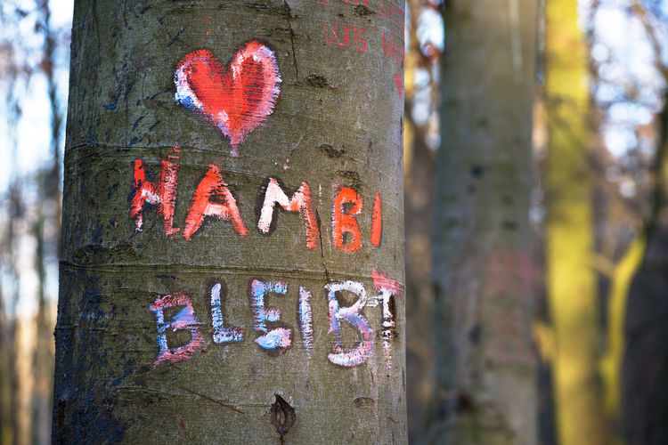 Trunk Tree Trunk Text Tree Communication Plant Focus On Foreground Western Script Day No People Close-up Capital Letter Sign Nature Forest Emotion Heart Shape Land Outdoors Love Message Hambi Hambibleibt Hambach Forest Germany