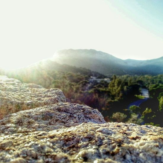 Nature Montagna Mountain Sardegna Sardinia Pula Visitpula Green Sun ☀ Street Foresta Forest Road First Eyeem Photo