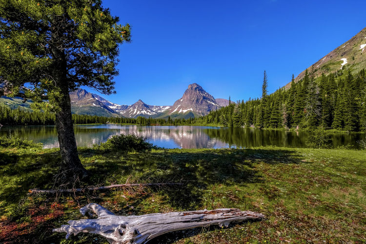 Two Medicine Lake, Glacier National Park Beauty In Nature Glacier National Park Lake Mountain Mountain Peak Mountain Range Nature No People Scenics - Nature Sky Tranquil Scene Tranquility Tree Water