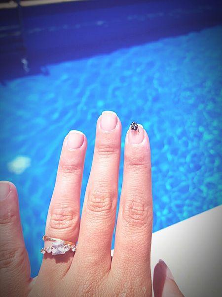 Suerte de casamiento 😍 Vaquitadesanantonio Suerte!!! Casamiento Verano2015