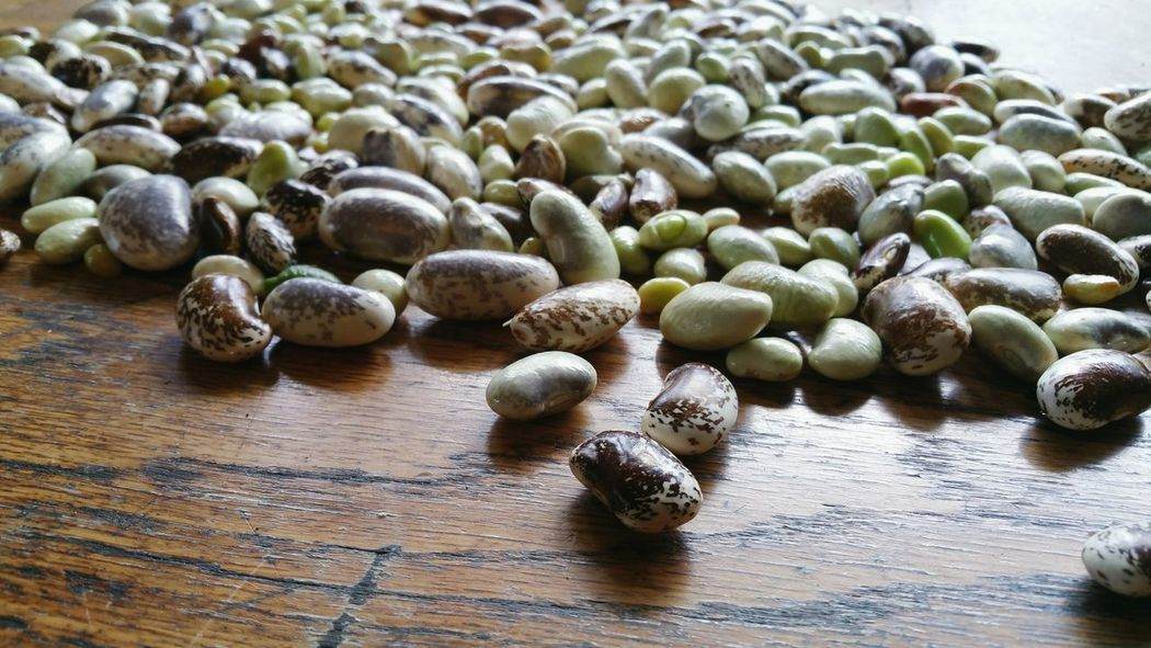 ... Beans ... Close-up Large Group Of Objects Healthy Eating Backgrounds No People Seeds Food Table Old Table Home Grown Gardening Growing Vegtables Vegetables Garden Allotment Ready To Cook Bean Autumn Kitchen Indoors  Scratched And Cracked Wood Surface Spotty Colorful Food