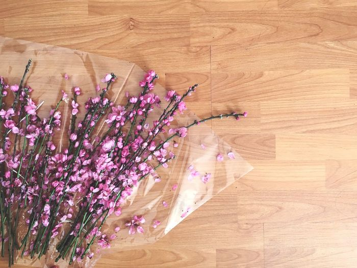 High angle view of flowering plants on hardwood floor