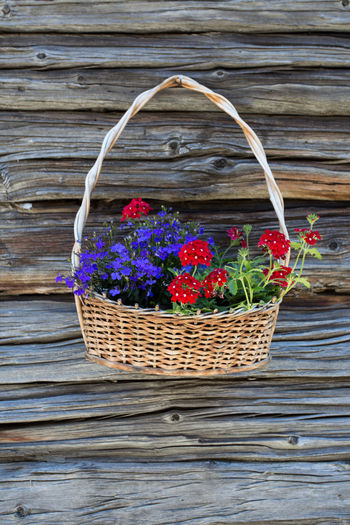 Blue and red flowers in a basket hanging against a wooden chalet wall Basket Beauty In Nature Close-up Container Day Flower Flowering Plant Fragility Freshness Nature No People Outdoors Plant Still Life Summer Table Vulnerability  Wicker Wood - Material Wood Grain