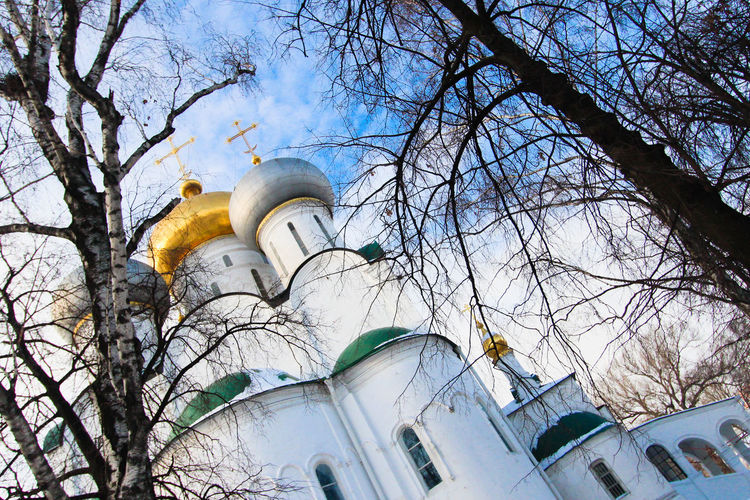 Church Moscow Russia Winter Architecture Bare Tree Branch Building Exterior Built Structure City Day Dome Façade Low Angle View No People Outdoors Place Of Worship Religion Religion And Beliefs Religious  Sky Spirituality Tree