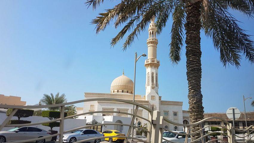 Islam Dubai Metroplo Metropolis Dessert AsianSide EyeEm Best Shots City Tree Dome Place Of Worship Sky Architecture Architectural Feature Mausoleum Date Palm Tree Cupola Marble Mosque Architectural Design Architectural Detail Neo-classical