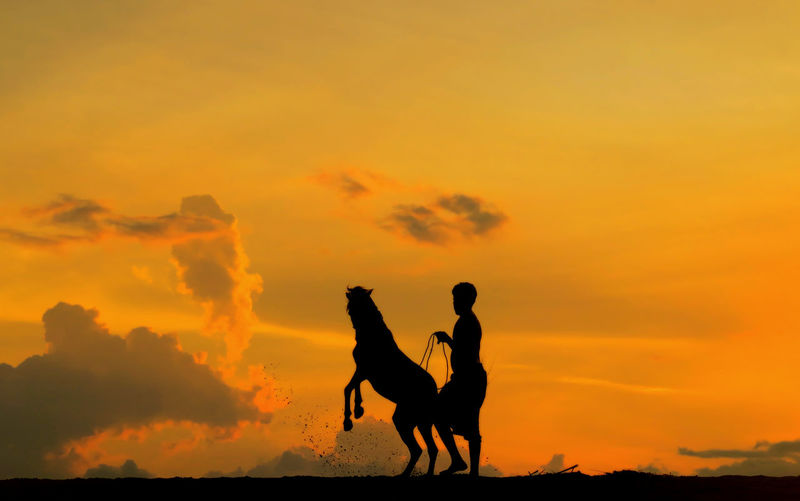 Silhouette man with horse on field against orange sky during sunset